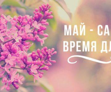 Майские праздники — время движений!